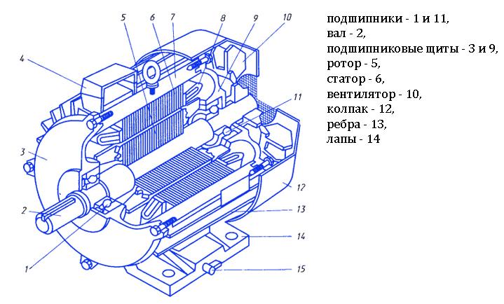 Принцип действия асинхронного электродвигателя